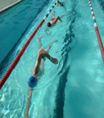SWIM CLINIC -      Saturday 1st June 2019. generalswim